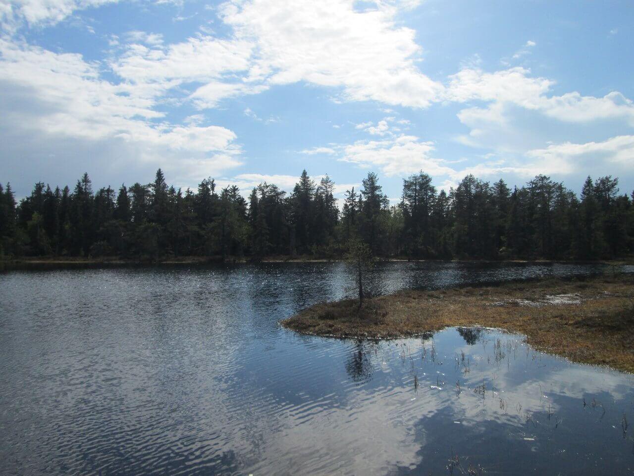 Оспорить границу земельного участка в Архангельске